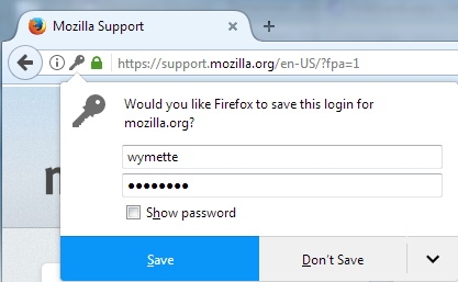 Mozilla Password Mnager