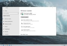 Install Windows 10 May 2019 Update
