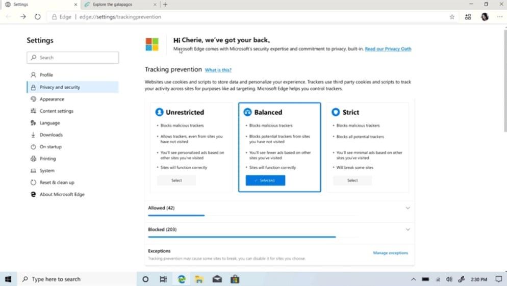 Microsoft Edge privacy tool