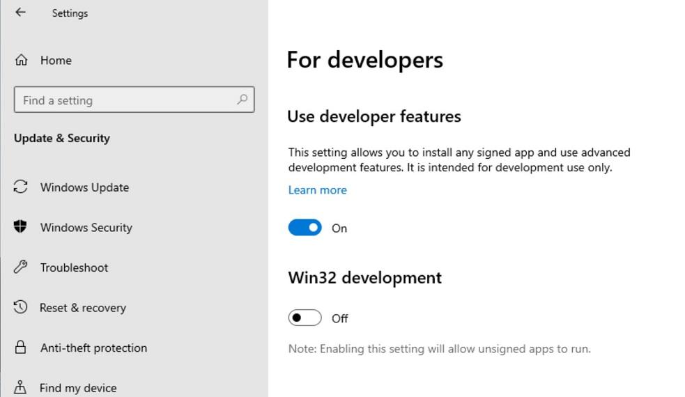 Windows 10X developer settings