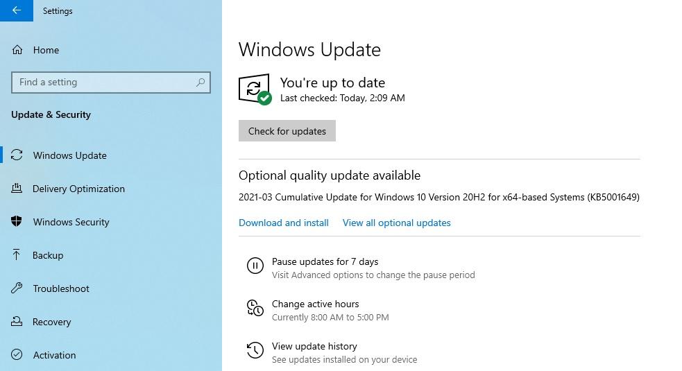 New optional update