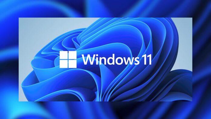Windows 11 security app crash