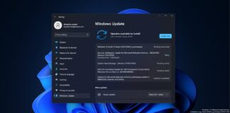 Windows 11 Build 22478 update