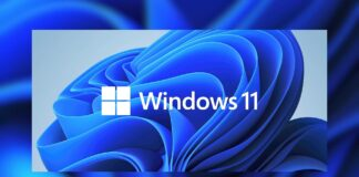Windows 11 ISO download