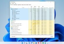 Windows 11 Task Manager features